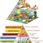 Alimentation alimentaire